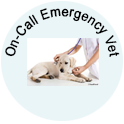 On Call Emergency Vet
